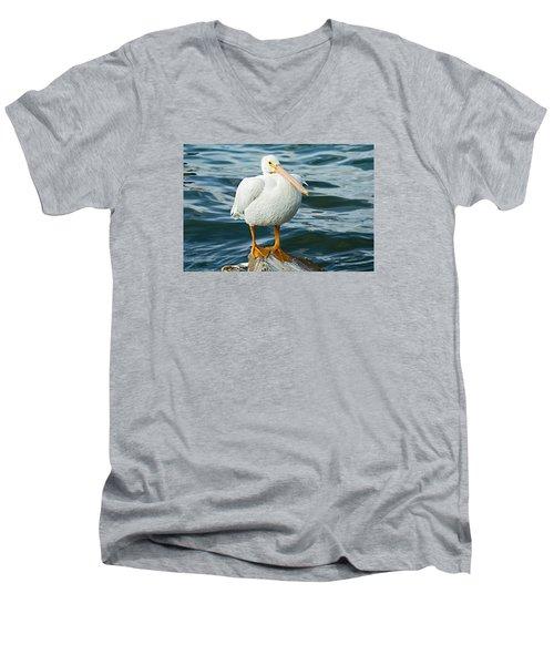 White Pelican Men's V-Neck T-Shirt