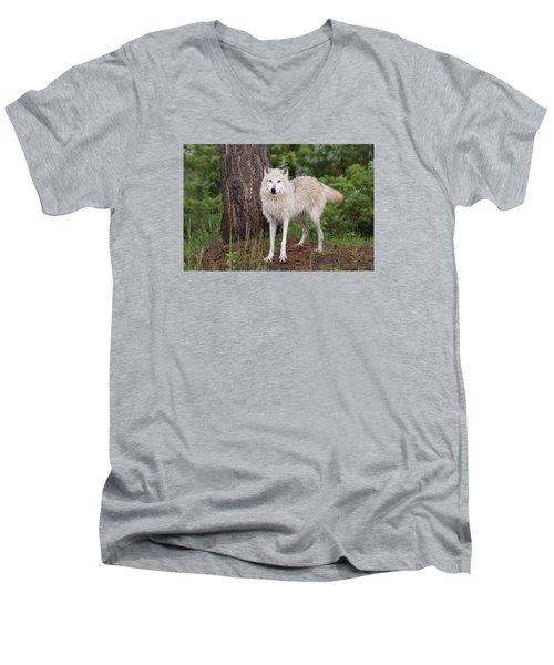 White Wolf. Men's V-Neck T-Shirt
