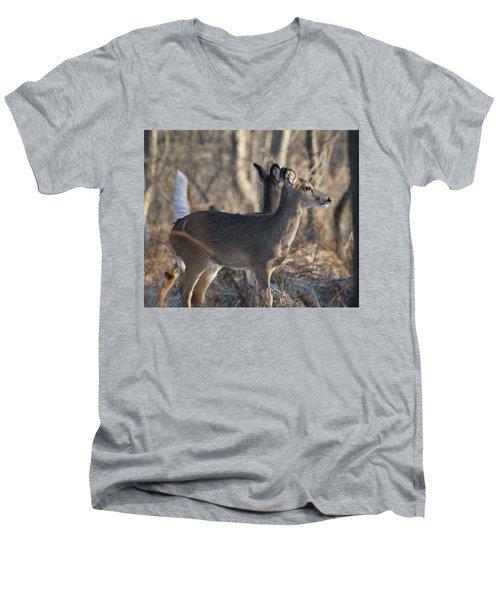 Wild Deer Men's V-Neck T-Shirt