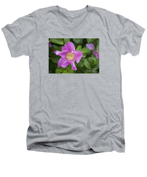 Men's V-Neck T-Shirt featuring the photograph Wild Rose by Alana Ranney