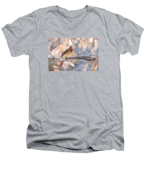 Winter Cardinal Men's V-Neck T-Shirt