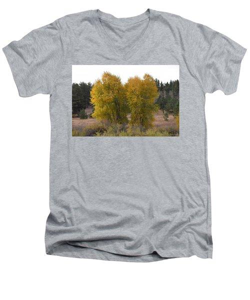 Aspen Trees In The Fall Co Men's V-Neck T-Shirt