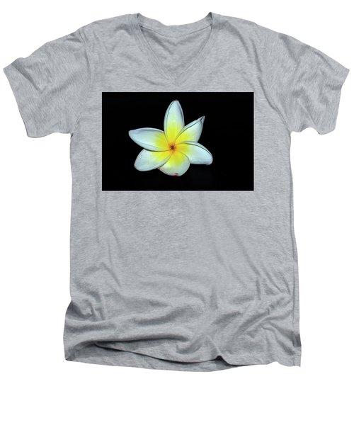 Plumaria Men's V-Neck T-Shirt