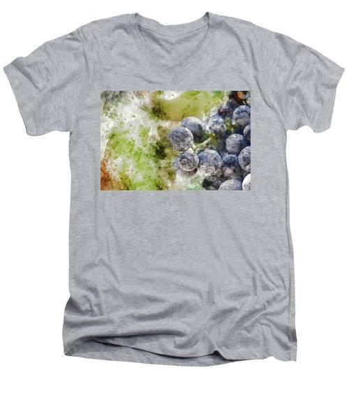 Red Grapes On The Vine Men's V-Neck T-Shirt