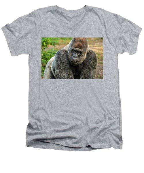 10898 Gorilla Men's V-Neck T-Shirt