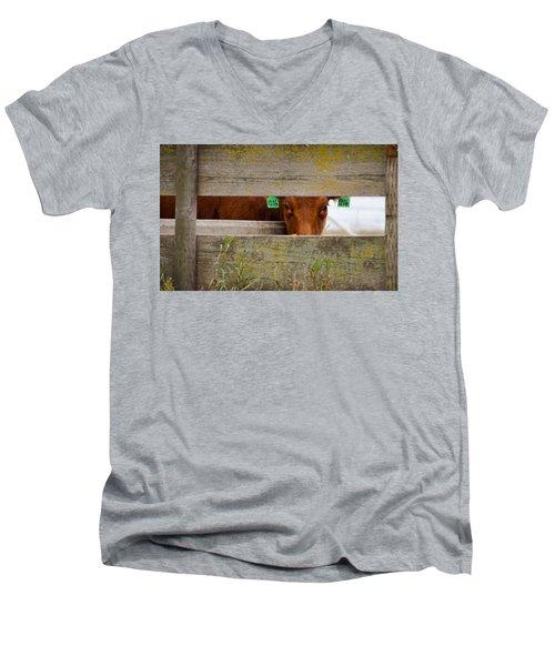 1206 Men's V-Neck T-Shirt