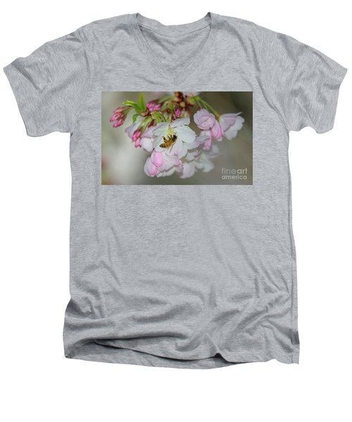 Silicon Valley Cherry Blossoms Men's V-Neck T-Shirt by Glenn Franco Simmons