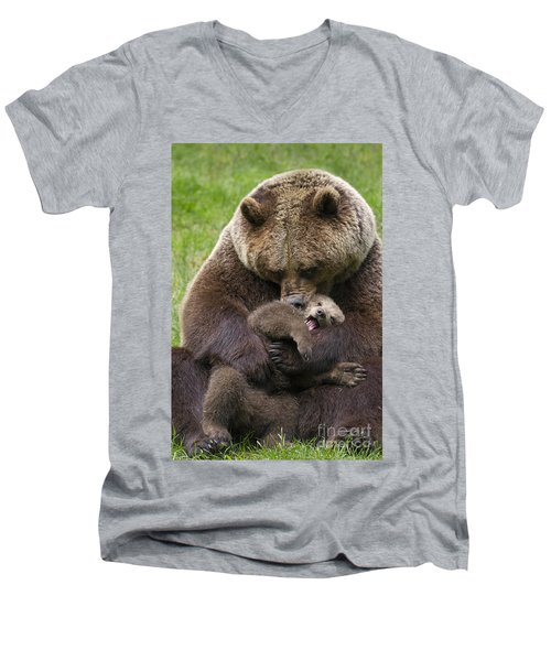 Mother Bear Cuddling Cub Men's V-Neck T-Shirt by Arterra Picture Library