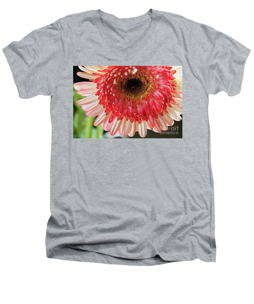 Nice Gerber Men's V-Neck T-Shirt by Elvira Ladocki