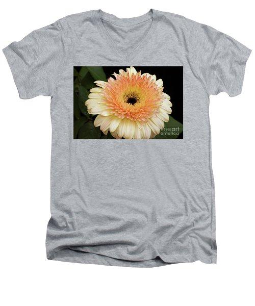 Beautiful Gerber Men's V-Neck T-Shirt