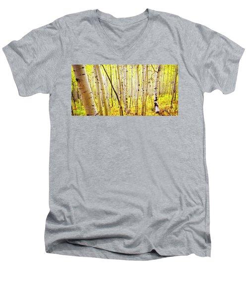 Aspen Grove II Men's V-Neck T-Shirt