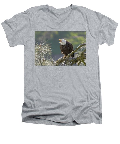 Men's V-Neck T-Shirt featuring the photograph Bald Eagle by Doug Herr