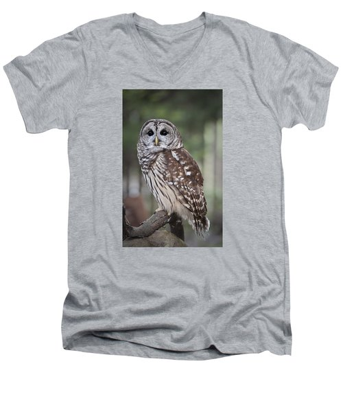 Men's V-Neck T-Shirt featuring the photograph Barred Owl by Tyson and Kathy Smith