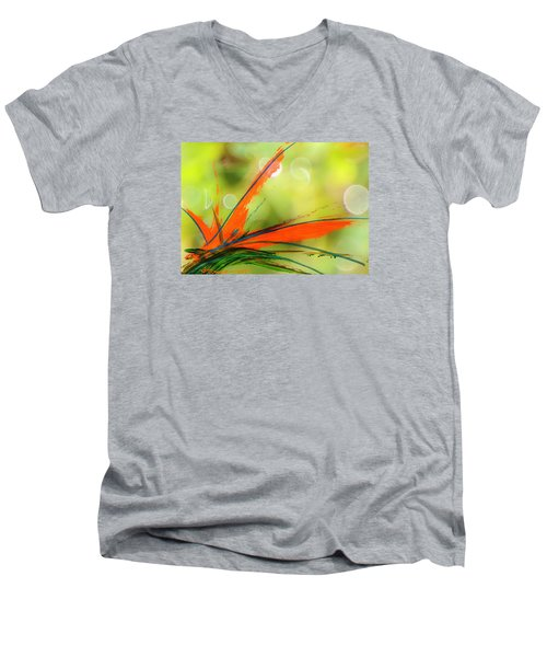 Bird Of Paradise 2 Men's V-Neck T-Shirt