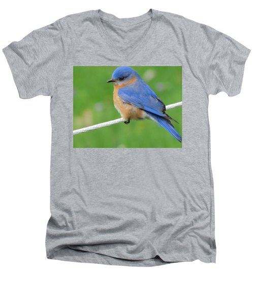 Men's V-Neck T-Shirt featuring the painting Blue Bird  by Betty Pieper