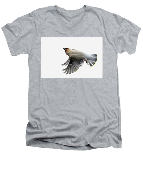 Men's V-Neck T-Shirt featuring the photograph Bohemian Waxwing  by Mircea Costina Photography