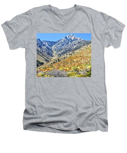 Bountiful Desert Men's V-Neck T-Shirt