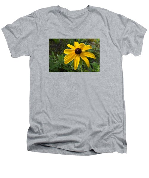 Men's V-Neck T-Shirt featuring the photograph Brown Eyed Susan  by Lyle Crump