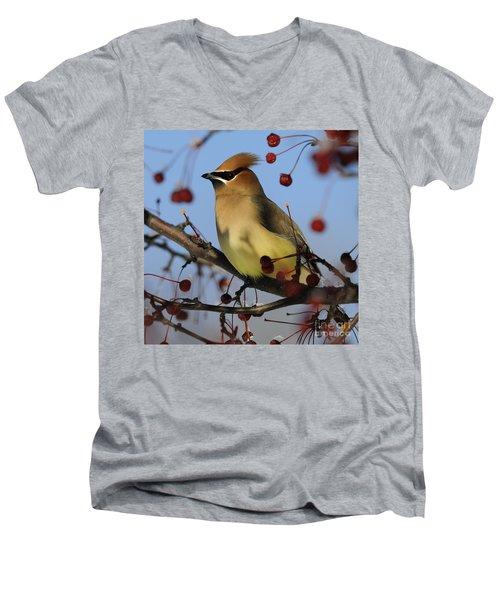 Cedar Waxwing... Men's V-Neck T-Shirt