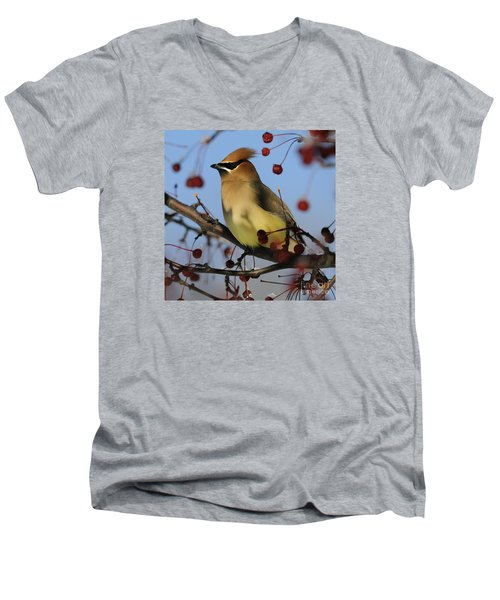 Cedar Waxwing... Men's V-Neck T-Shirt