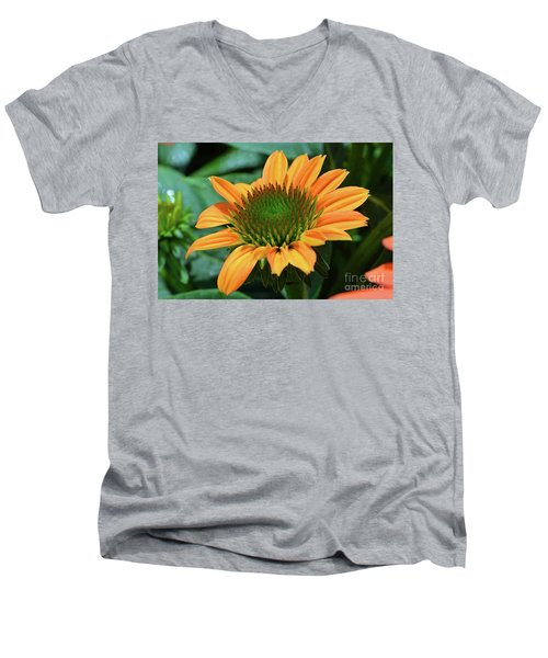 Coneflower  Men's V-Neck T-Shirt