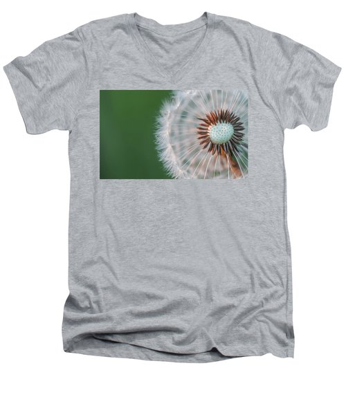 Dandelion Men's V-Neck T-Shirt by Bess Hamiti