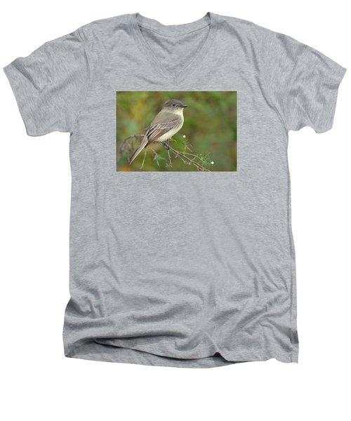 Eastern Phoebe Men's V-Neck T-Shirt by Alan Lenk