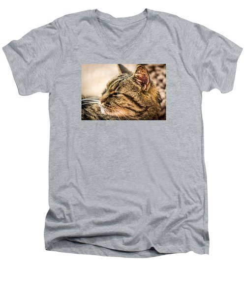 Men's V-Neck T-Shirt featuring the photograph Gnewton by Sabine Edrissi