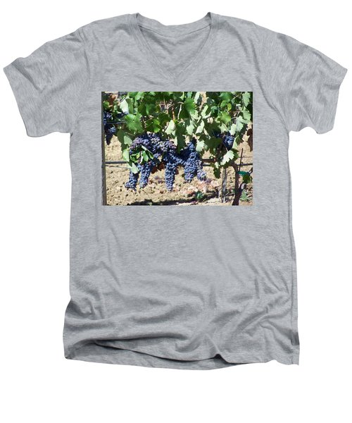 Grapevine Men's V-Neck T-Shirt