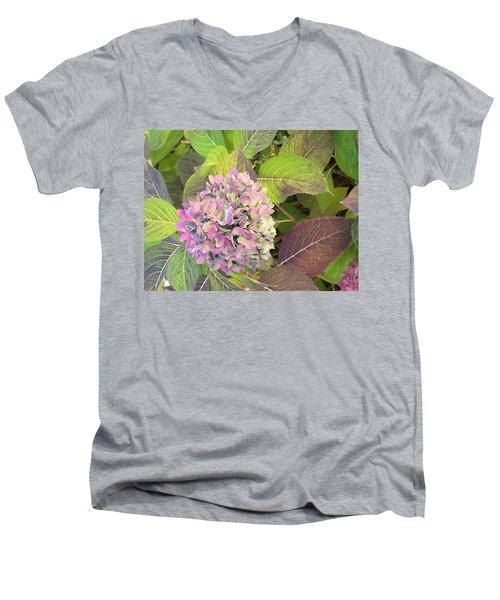 Hydrangea Men's V-Neck T-Shirt by Kay Gilley