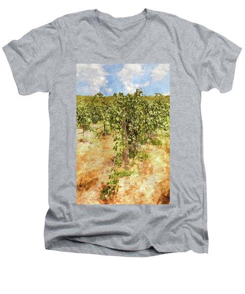 Napa Vineyard In The Spring Men's V-Neck T-Shirt