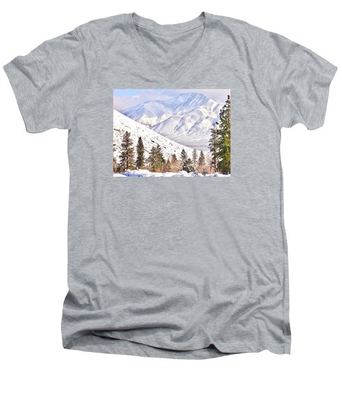 Natural Nature Men's V-Neck T-Shirt