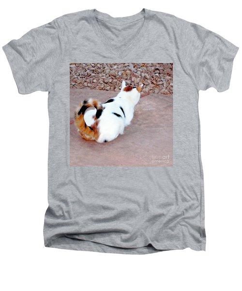 Silly Calico Kitty Men's V-Neck T-Shirt
