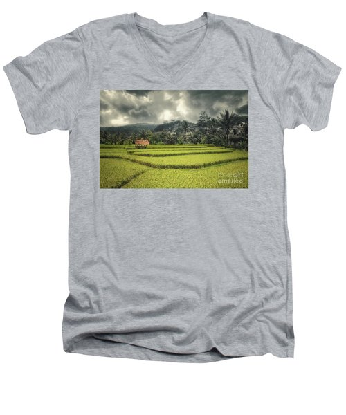 Men's V-Neck T-Shirt featuring the photograph Paddy Field by Charuhas Images