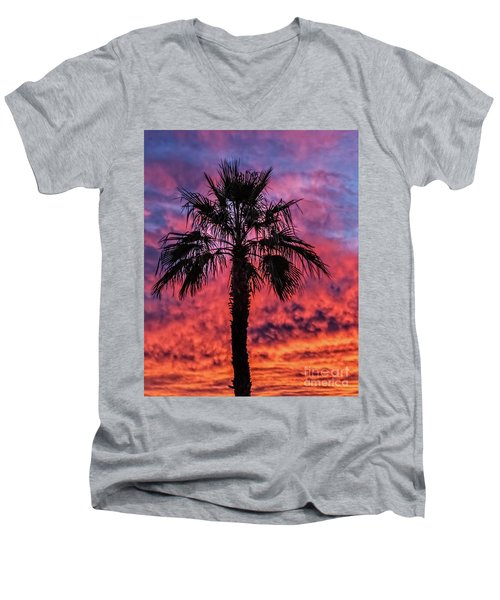 Palm Tree Silhouette Men's V-Neck T-Shirt by Robert Bales