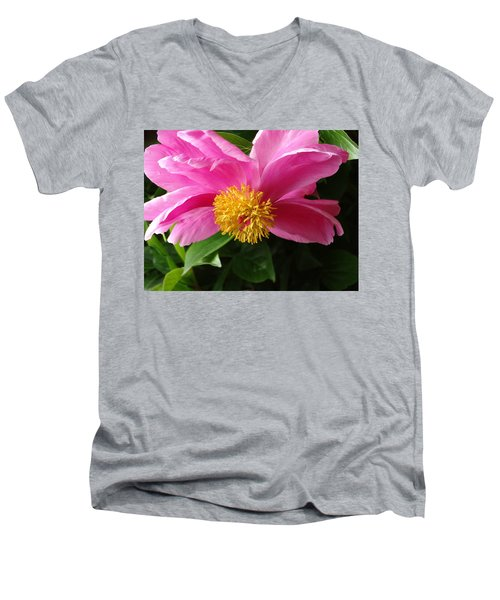 Pink Peony Men's V-Neck T-Shirt by Rebecca Overton