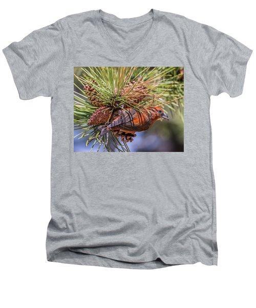 Red Crossbill Men's V-Neck T-Shirt by Michael Cunningham