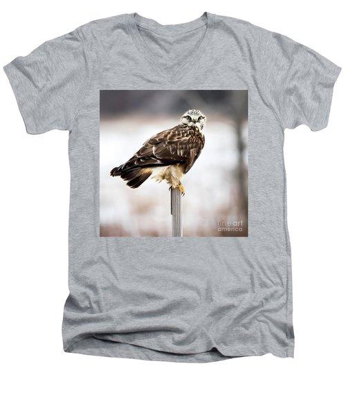 Men's V-Neck T-Shirt featuring the photograph Rough-legged Hawk by Ricky L Jones