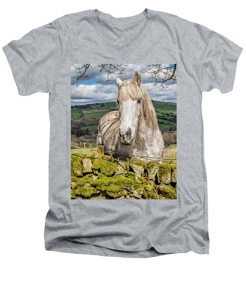 Men's V-Neck T-Shirt featuring the photograph Rustic Horse by Nick Bywater
