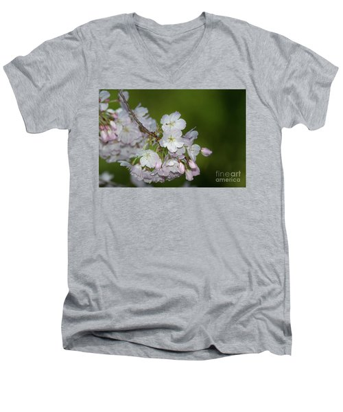 Silicon Valley Cherry Blossoms Men's V-Neck T-Shirt