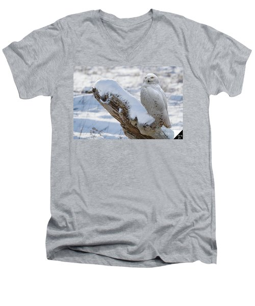 Men's V-Neck T-Shirt featuring the photograph Snowy Owl by Jim  Hatch