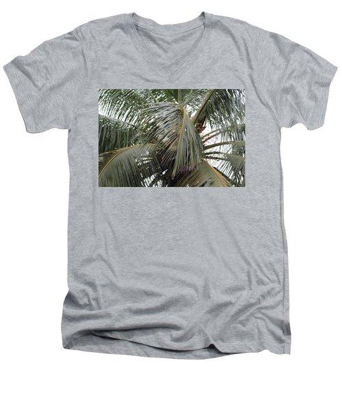 Through The Trees Men's V-Neck T-Shirt