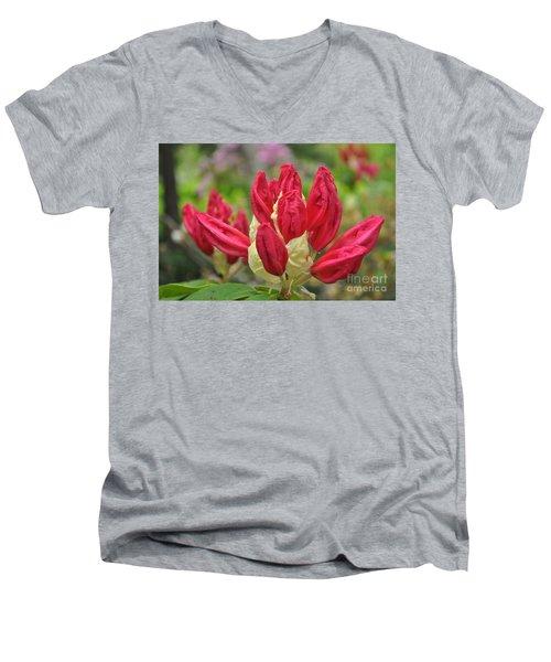 Tips Men's V-Neck T-Shirt
