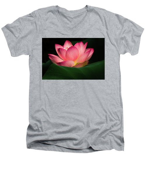 Men's V-Neck T-Shirt featuring the photograph Water Lily by Jay Stockhaus