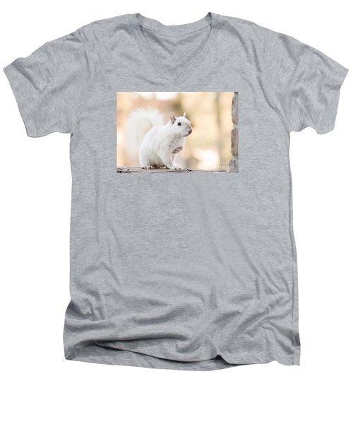 White Squirrel Men's V-Neck T-Shirt by Vizual Studio