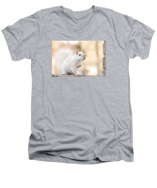 White Squirrel Men's V-Neck T-Shirt