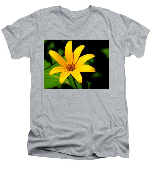 Wild Flower Men's V-Neck T-Shirt by Eric Switzer
