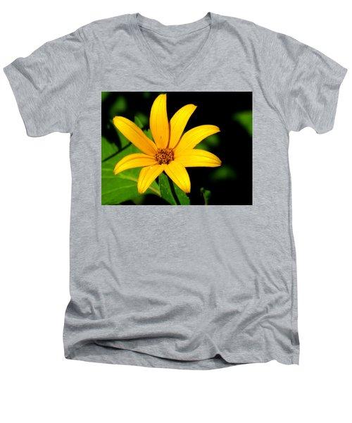 Wild Flower Men's V-Neck T-Shirt