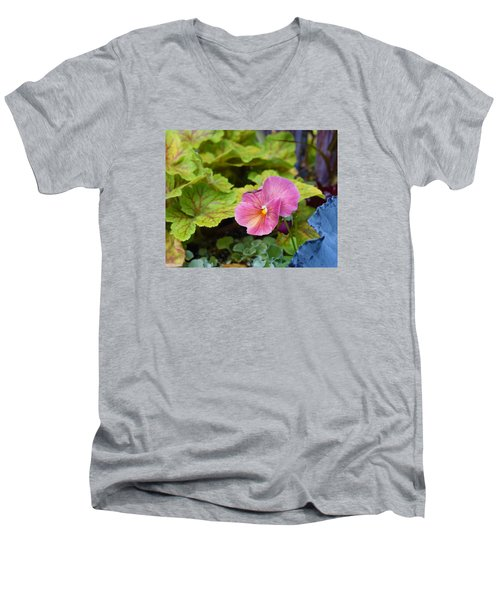 2015 After The Frost At The Garden Pansies 3 Men's V-Neck T-Shirt by Janis Nussbaum Senungetuk