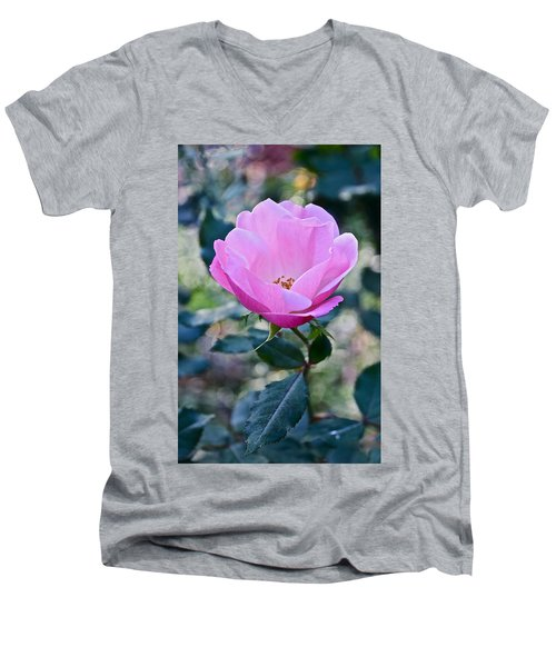 2015 After The Frost At The Garden Pink  Rose Men's V-Neck T-Shirt